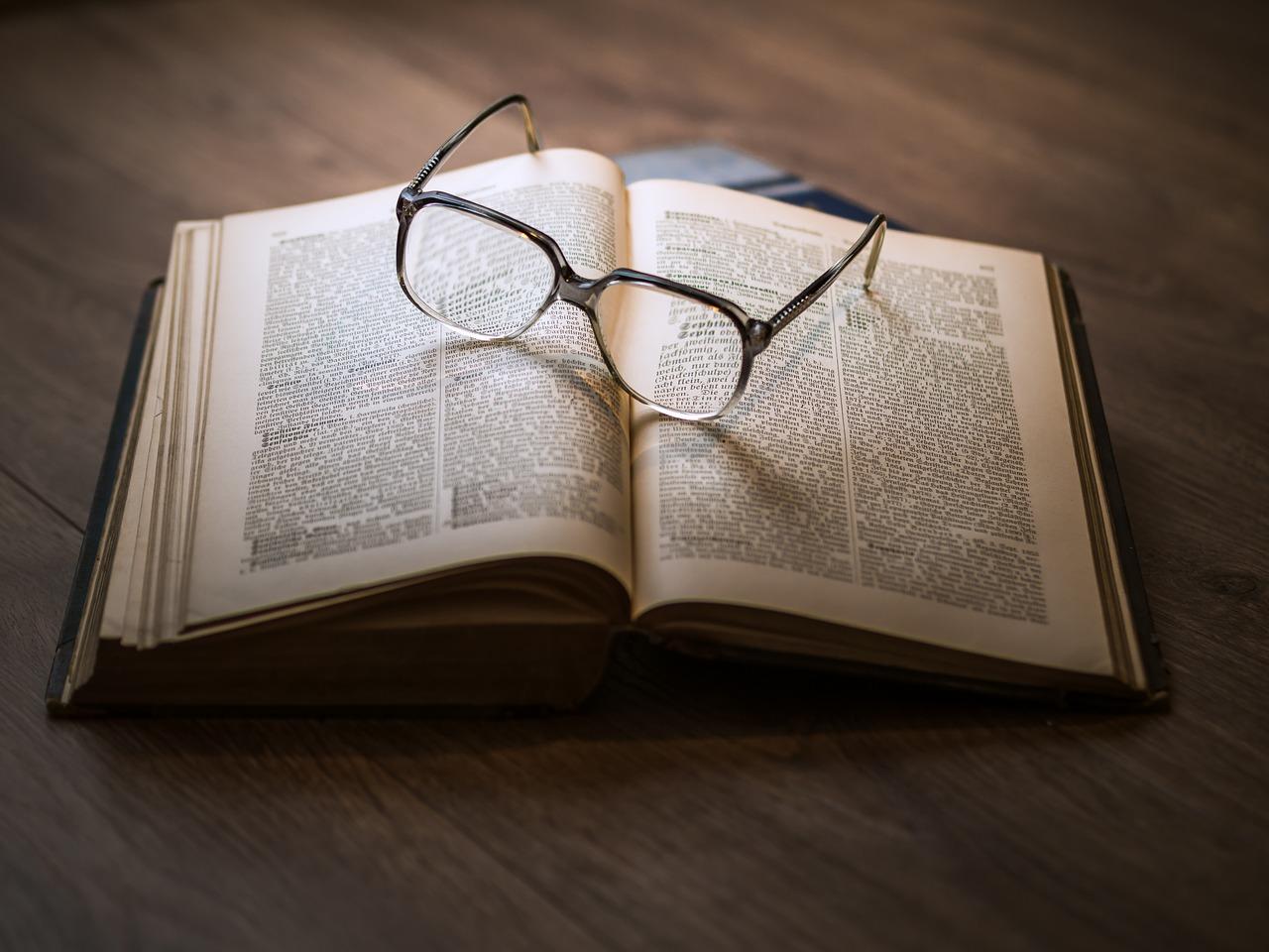 edebiyat özel ders
